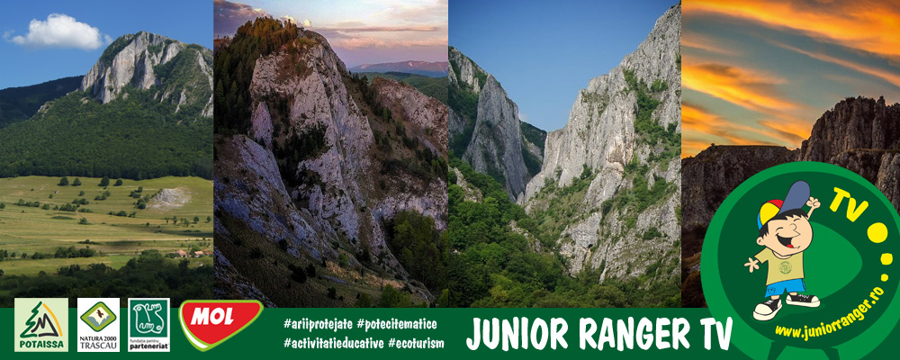 header_web_juniorranger2018